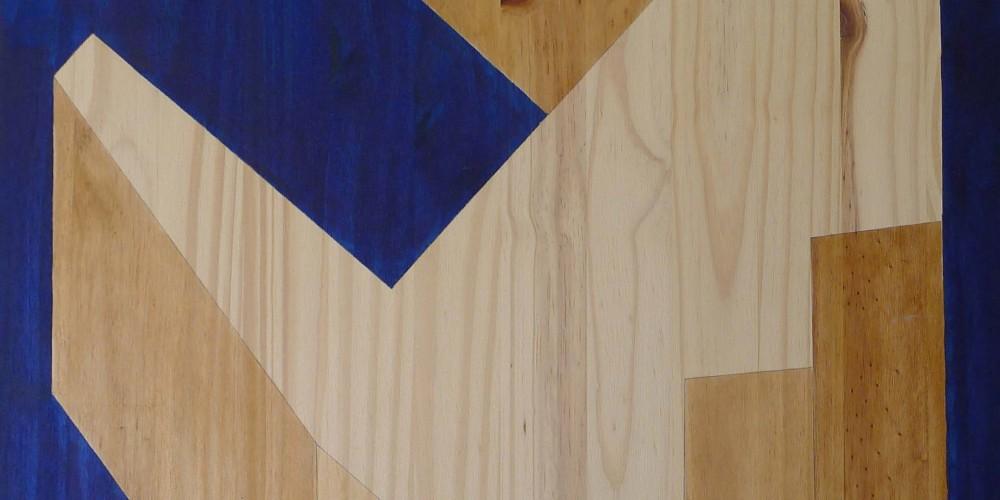 F3D N°14 huile sur sapin 60x80cm 2011
